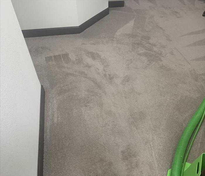 Grey carpet before cleaning