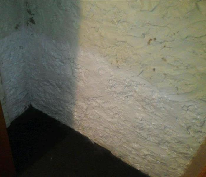 Mold on Basement Wall in Fort Atkinson, WI After