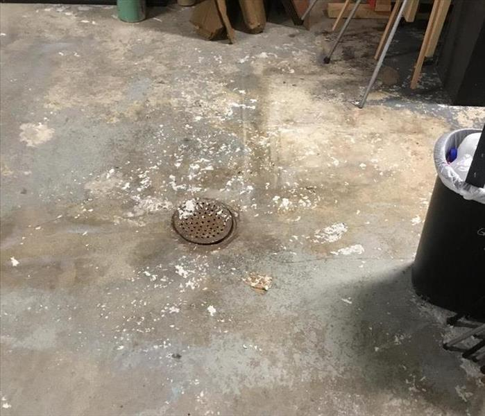 Bits of sewage debris lying on concrete floor near floor drain