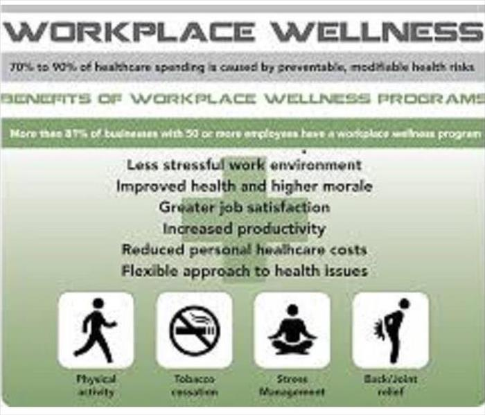 Facts about workplace wellness such as increasing job satisfaction and increased productivity