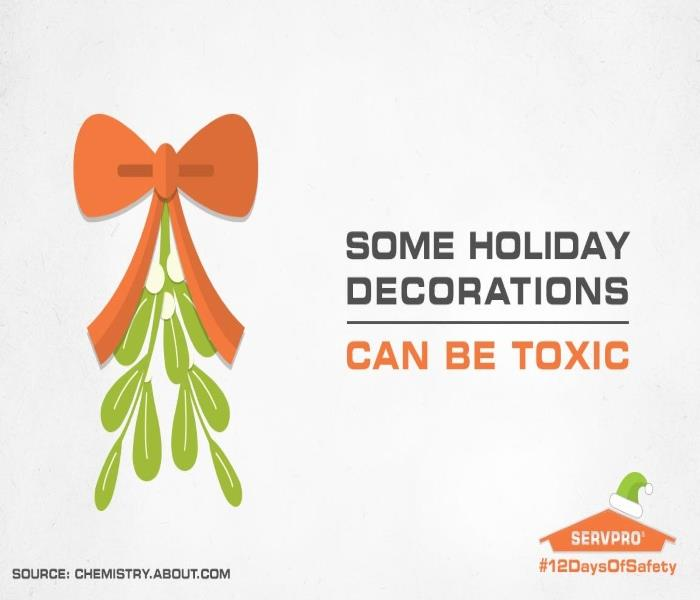 General Holiday Safety Tip #5