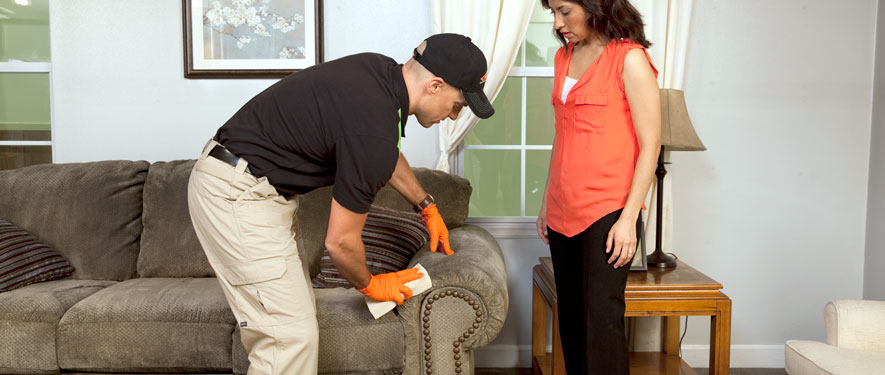 Oconomowoc, WI carpet upholstery cleaning